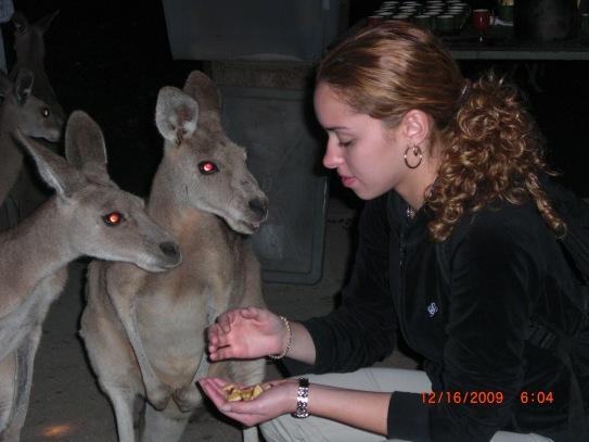 My wife feeding the Kangaroos in Cairns, Australia 2009!