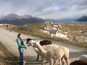 My wife Feeding wild animals Queenstown, New zealand 2009!
