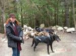 Dog Sledding in Alaska!
