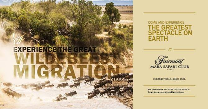 The great migration in Kenya, Africa.