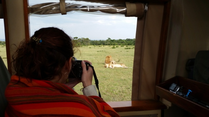 This is how close you get to the animals on game drive.