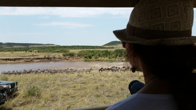 Watching the great migration of the wildebeest in the Maasai Mara at a special spot of the Mara River.